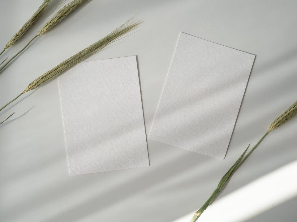 Carte blanche : Adeline